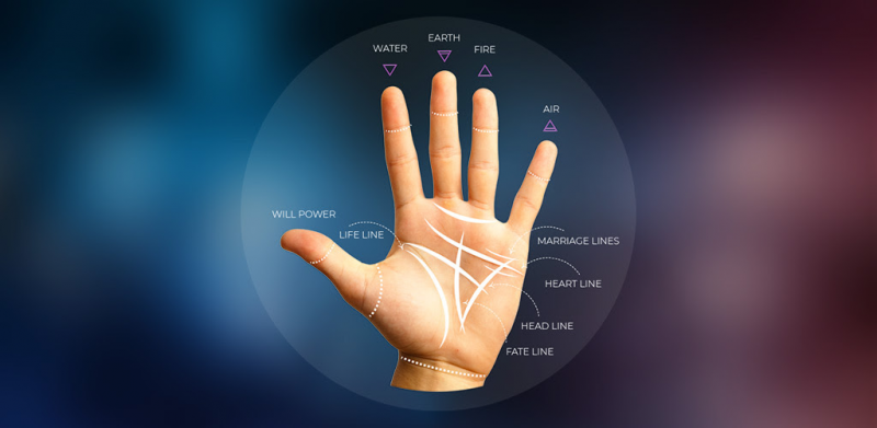 Palmistry App