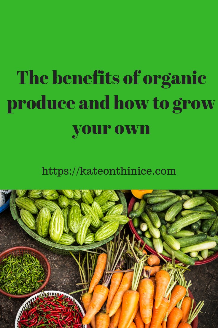 The BeneFits Of Eating Organic Produce And How To Grow Your Own