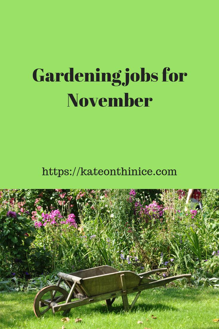 Gardening Jobs For November
